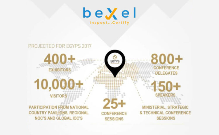 Single Page One beXel Inspection Software